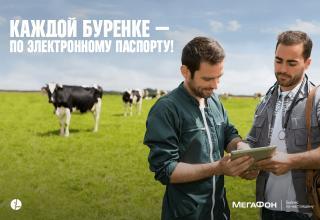 Уральским ветеринарам выпишут планшеты