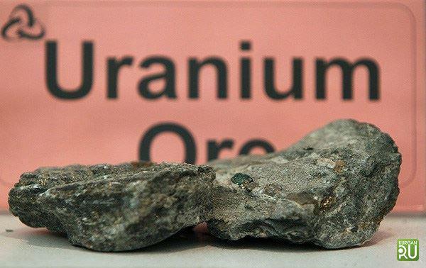 Руководство продало лицензию надобычу урана вКурганской области