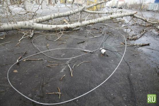 Стихия оставила без электричества практически  20 000  граждан  Зауралья