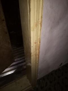 Фото с осмотра места происшествия, предоставлено СУ СКР по Курганской области